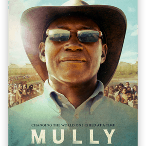 mully silver cover